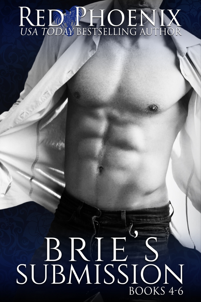 bries-submission-4-6-amazon