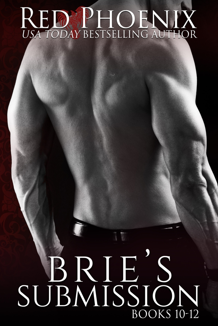 Brie's Submission-10-12-AMAZON