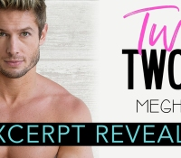 Excerpt Reveal:  Twisted Twosome – Meghan Quinn